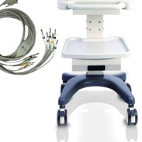 Electrocardiograph Accessories